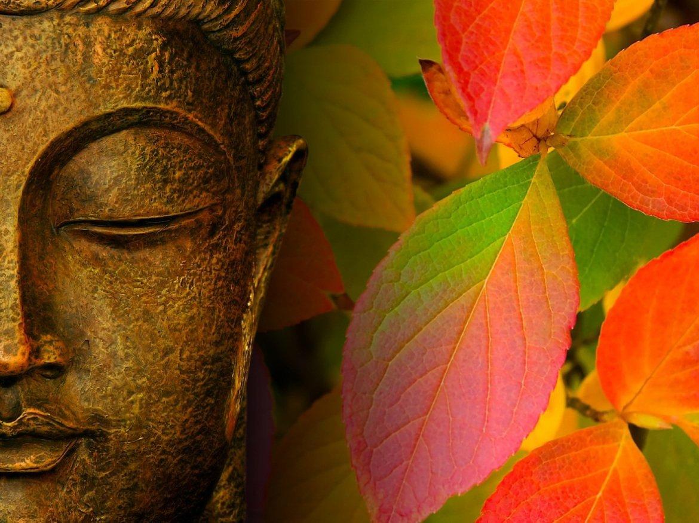 buddha-8-leckeje
