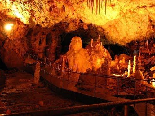 medve-barlang1