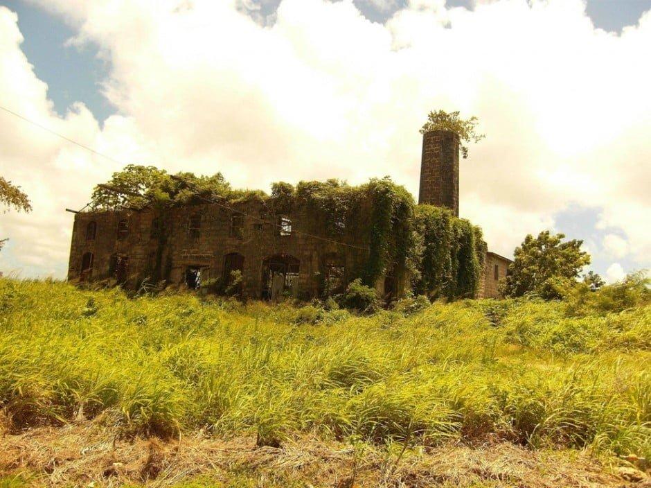 20. Romba dőlt szeszfőzde, Barbados